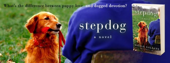 Stepdog-FB-MP21702.jpg